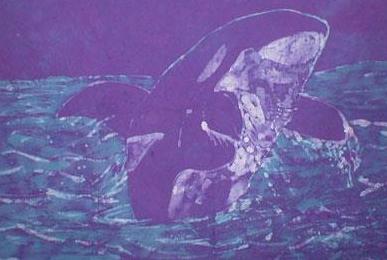 Orca batik