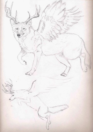 Coyote gets his wings